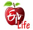 Etv Telugu channel logo