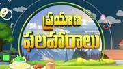 Prayana Phalaharalu ( ప్రయాణ ఫలహారాలు )